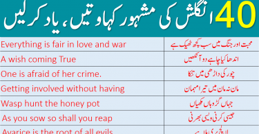 40 Most Commonly Used English Proverbs With Urdu Translation