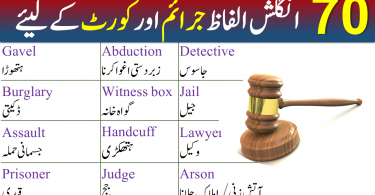 Crimes and Court Vocabulary Words list With Urdu Meanings