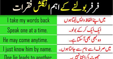 100 English to Urdu Sentences with Urdu and Hindi Translation