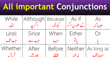 Vocabulary for Parts of Body with Urdu and Hindi Meanings