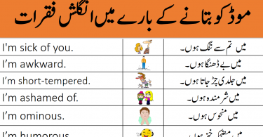 Daily Used English Sentences in Urdu About Mood and Feeling