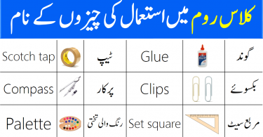 Classroom Objects Vocabulary with Urdu Meanings