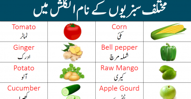 Vegetables Names List in English with Urdu Meanings