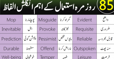 85 Daily Use English Words For Beginners in Urdu