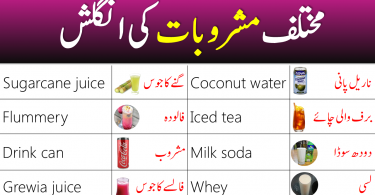 Drinks Vocabulary in English with Urdu Meanings