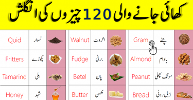 List of Food Names in English with Urdu Meanings