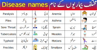 Diseases Names Vocabulary in English with Urdu Meanings
