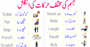 English Vocabulary for Body Movements with Urdu Meanings