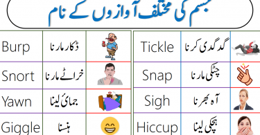 Body Sounds and Noises Vocabulary with Urdu Meanings