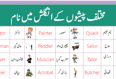 Occupations and Jobs Vocabulary Words with Urdu Meanings