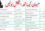 40 English Sentences to Talk with Guest in Urdu with PDF