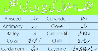 Vocabulary for Corns, Spices and Oil in English with Urdu Meanings