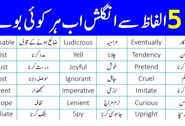55 Basic English Vocabulary Words with Urdu Meanings