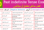 150 Example Sentences for Past Indefinite Tense with Urdu Translation PDF
