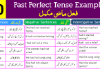 150 Example Sentences for Past Perfect Tense with Urdu Translation