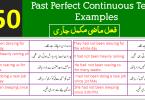 Past Perfect Continuous Tense Sentences in Urdu PDF